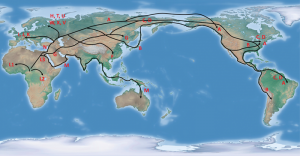 Spread of Mitochondrial DNA Haplogroups from Africa